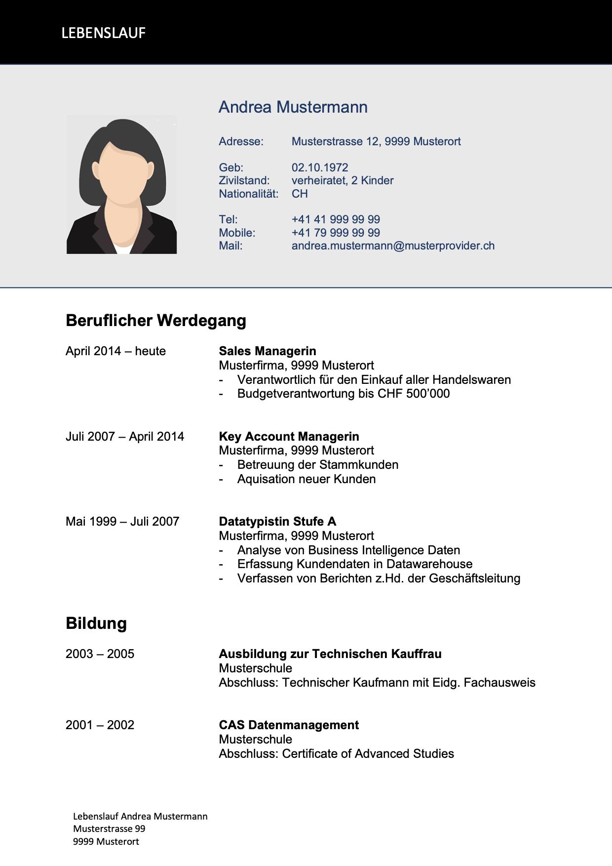 Lebenslauf Vorlage Fur Bedwerbungen In Der Schweiz Vorla Ch