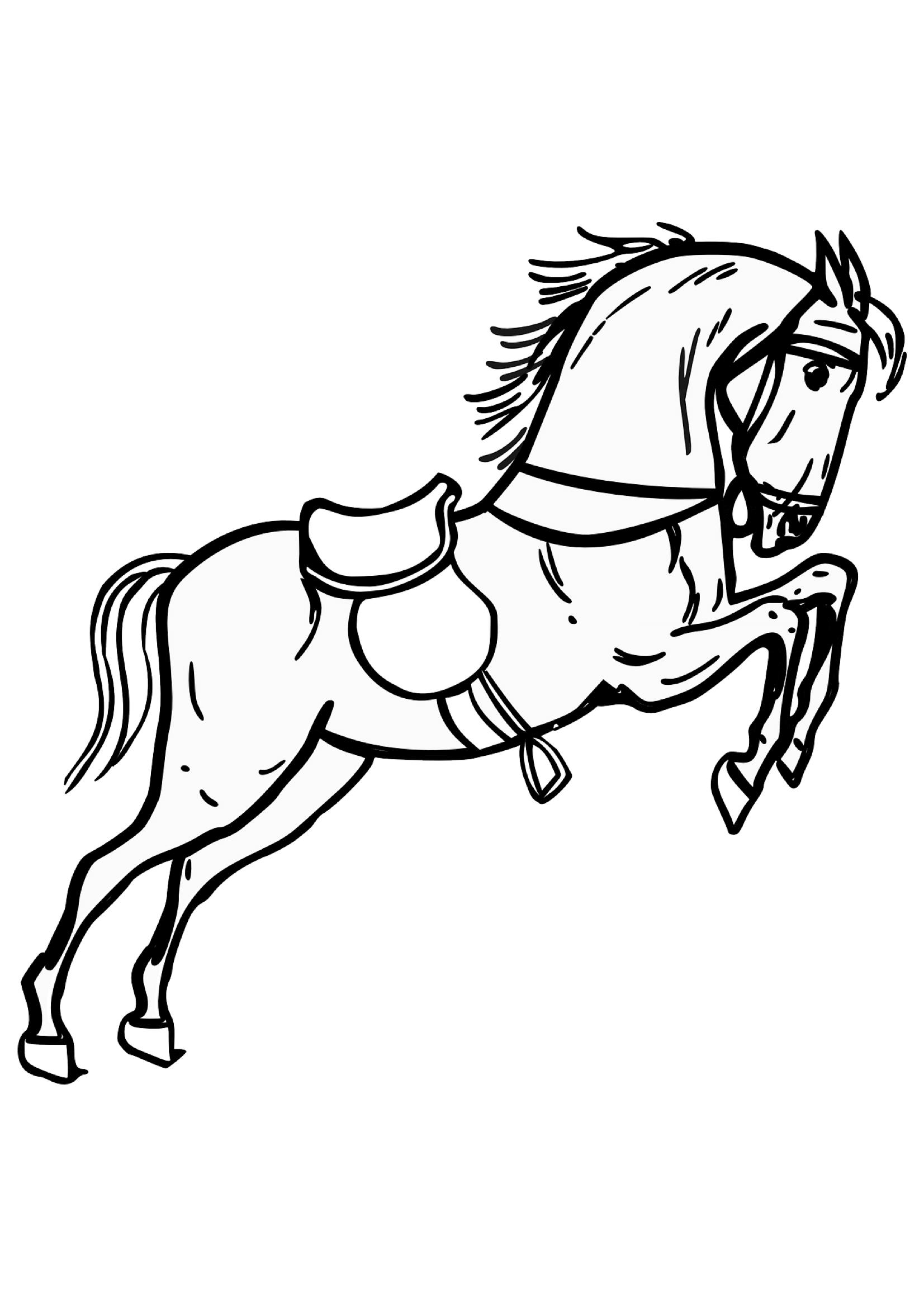 ausmalbilder pferde springen  springtipps fur heftige